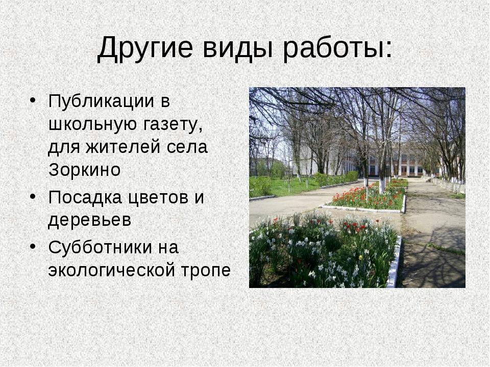 Другие виды работы: Публикации в школьную газету, для жителей села Зоркино По...