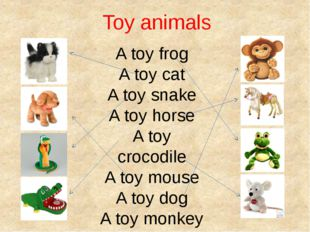 Toy animals A toy frog A toy cat A toy snake A toy horse A toy crocodile A to