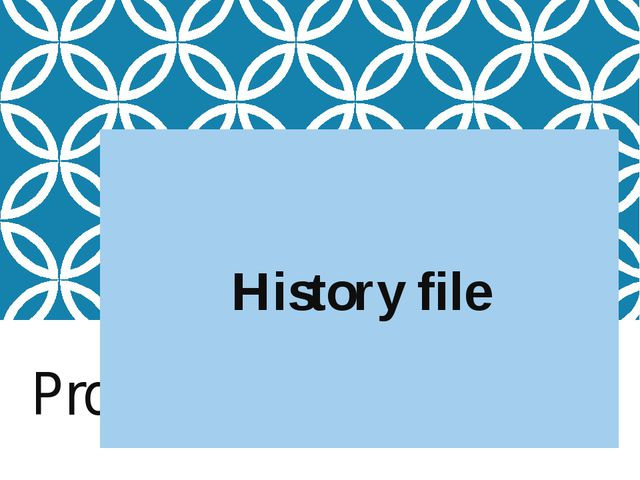 Project History file