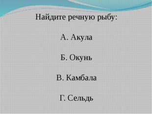 Найдите речную рыбу: А. Акула Б. Окунь В. Камбала Г. Сельдь
