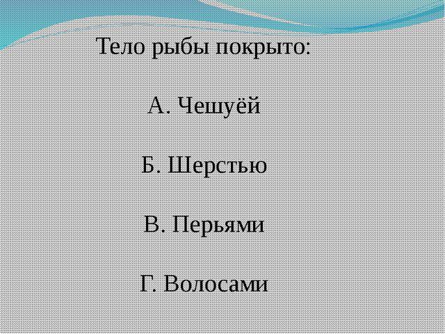 Тело рыбы покрыто: А. Чешуёй Б. Шерстью В. Перьями Г. Волосами