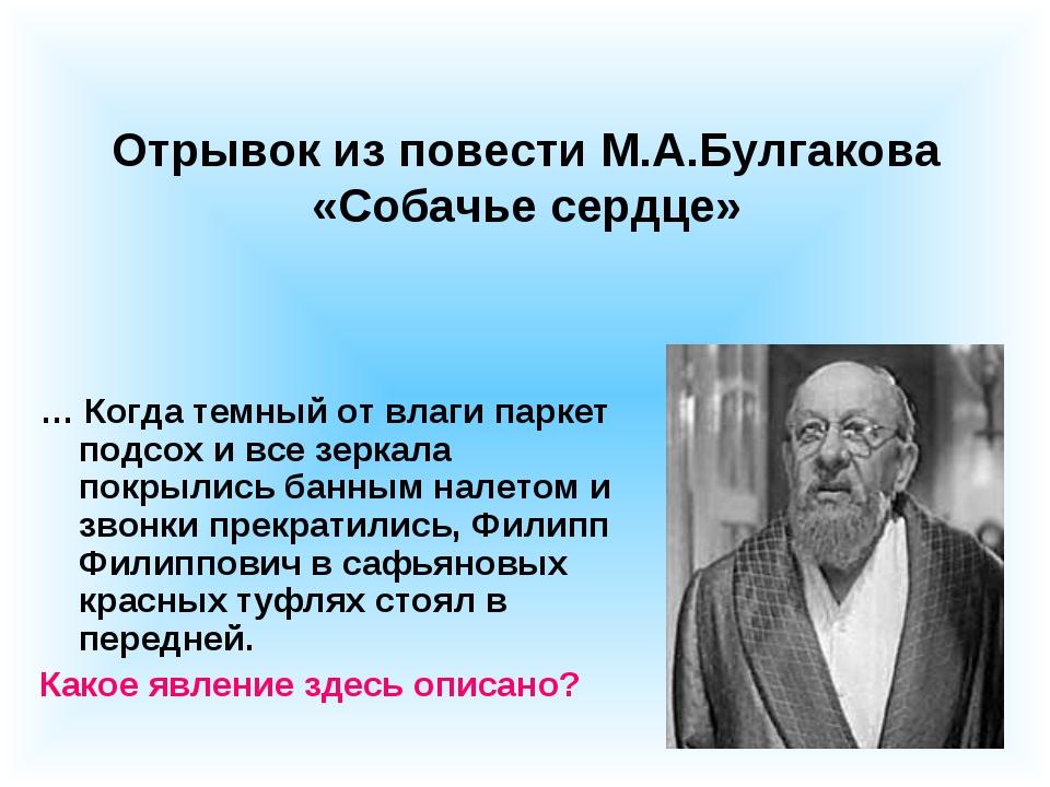 Отрывок из повести М.А.Булгакова «Собачье сердце» … Когда темный от влаги пар...