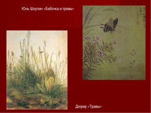 Дюрер «Травы» Юнь Шоупин «Бабочка и травы»