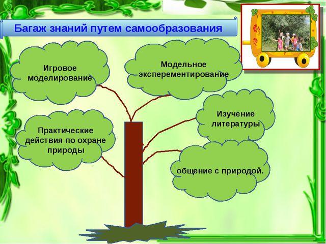 Багаж знаний путем самообразования Изучение литературы Практические действия...
