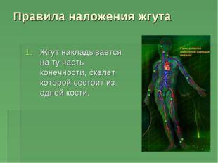 Правила наложения жгута Жгут накладывается на ту часть конечности, скелет кот