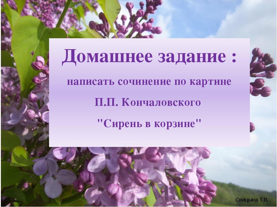 """Домашнее задание : написать сочинение по картине П.П. Кончаловского """"Сирень..."""