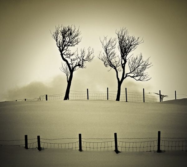 winter inspired photographs part3 10 Beautiful winter inspired photographs {Part 3}