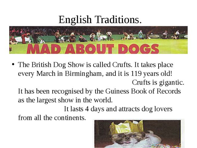 English Traditions. The British Dog Show is called Crufts. It takes place ev...