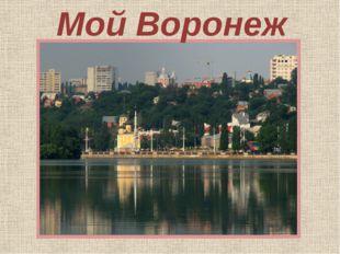 Мой Воронеж