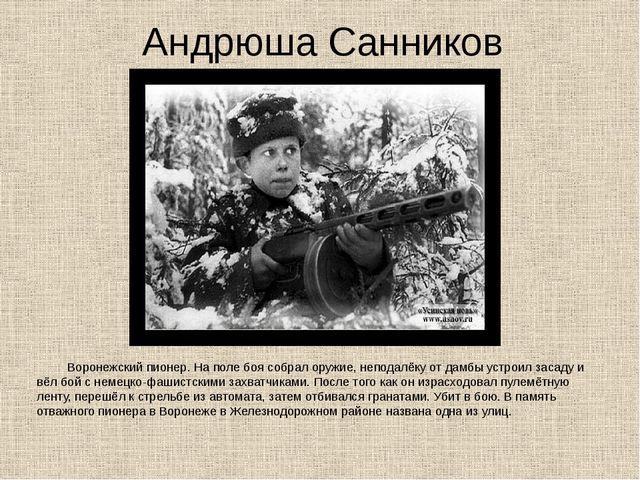 Андрюша Санников Воронежский пионер. На поле боя собрал оружие, неподалёку от...