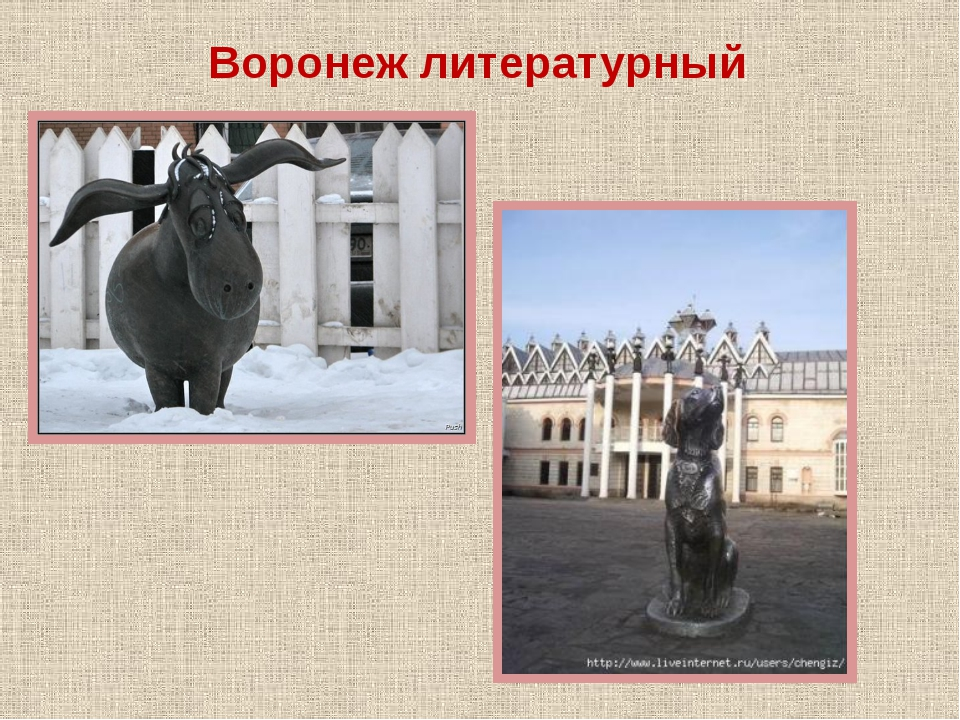 Воронеж литературный