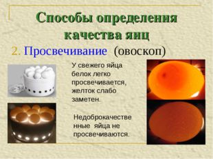 Способы определения качества яиц 2. Просвечивание (овоскоп)  У свежего яйца
