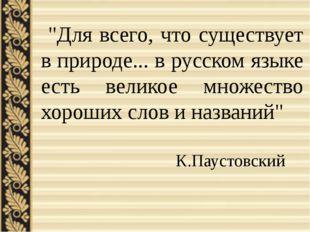 """""""Для всего, что существует в природе... в русском языке есть великое множест"""