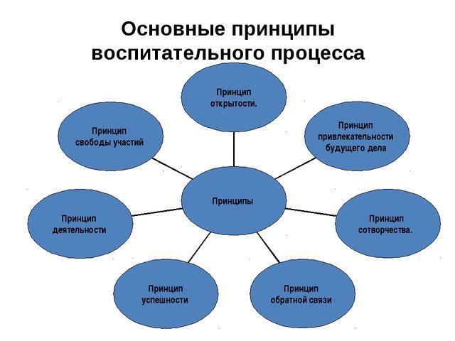 Основные принципы воспитательного процесса