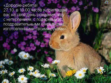 hello_html_6827c6f0.jpg