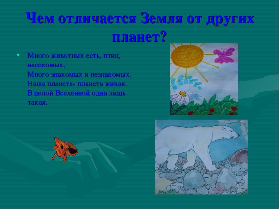 Чем отличается Земля от других планет? Много животных есть, птиц, насекомых,...
