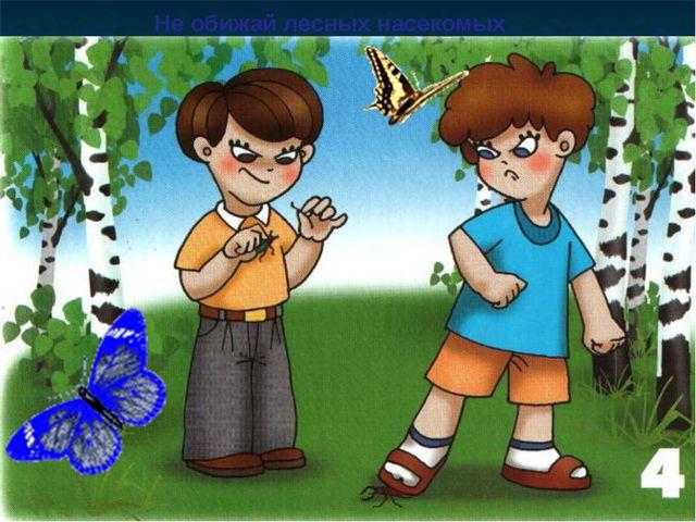 Не обижай лесных насекомых