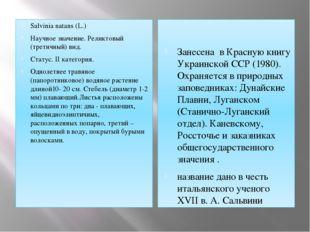 Salvinia natans (L.) Научное значение. Реликтовый (третичный) вид. Статус. II