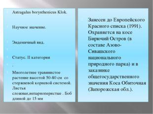 Astragalus borysthenicus Klok. Научное значение. Эндемичный вид.  Статус. II