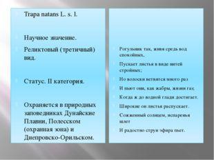Trapa natans L. s. l. Научное значение. Реликтовый (третичный) вид.  Статус.