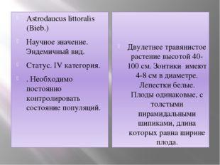 Astrodaucus littoralis (Bieb.) Научное значение. Эндемичный вид.  Статус. IV