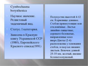 Cymbochasma borysthenica Научное значение. Реликтовый эндемичный вид.  Стату