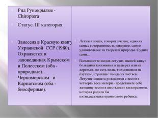 Ряд Рукокрылые - Chiroptera Статус. III категория. Занесена в Красную книгу У