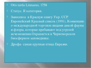 Otis tarda Linnaeus, 1758 Статус. II категория. Занесеноа в Красную книгу Укр