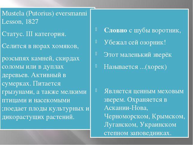Mustela (Putorius) eversmanni Lesson, 1827 Статус. III категория. Селится в...