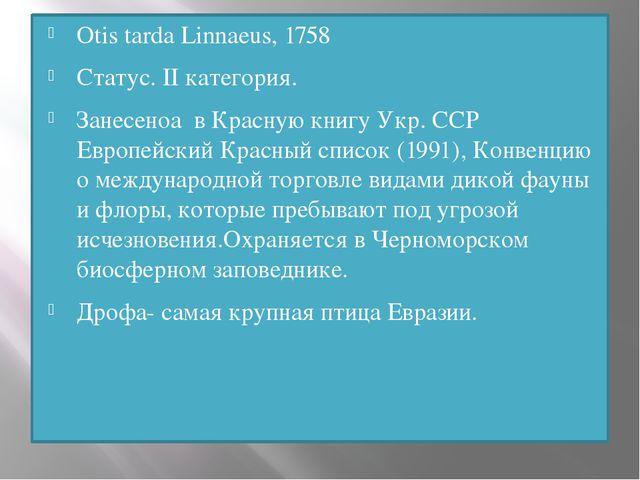 Otis tarda Linnaeus, 1758 Статус. II категория. Занесеноа в Красную книгу Укр...
