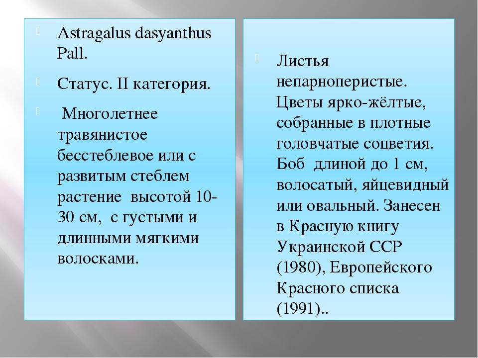 Astragalus dasyanthus Pall. Статус. II категория. Многолетнее травянистое бес...