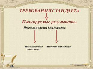 Итоговая оценка результатов ТРЕБОВАНИЯ СТАНДАРТА Планируемые результаты Проме