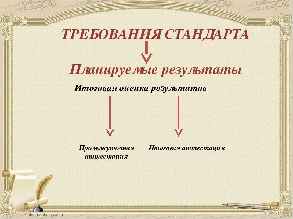 Итоговая оценка результатов ТРЕБОВАНИЯ СТАНДАРТА Планируемые результаты Проме...