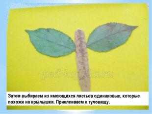 Затем выбираем из имеющихся листьев одинаковые, которые похожи на крылышки. П
