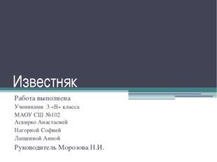 Известняк Работа выполнена Учениками 3 «В» класса МАОУ СШ №102 Аскирко Анаста