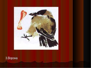 3.Ворона