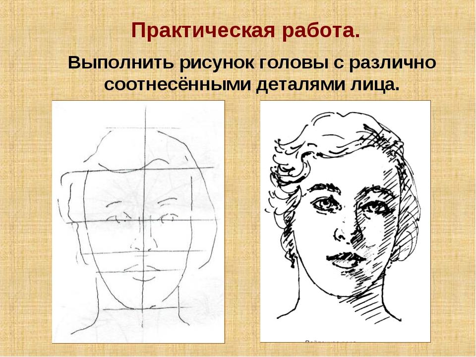 Практическая работа. Выполнить рисунок головы с различно соотнесёнными деталя...