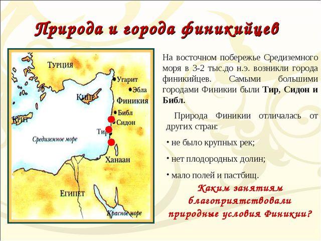Природа и города финикийцев. Природа Финикии отличалась от других стран: не б...