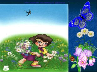 Не рвите полевые цветы