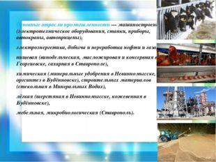 Основные отрасли промышленности — машиностроение (электротехническое оборудов
