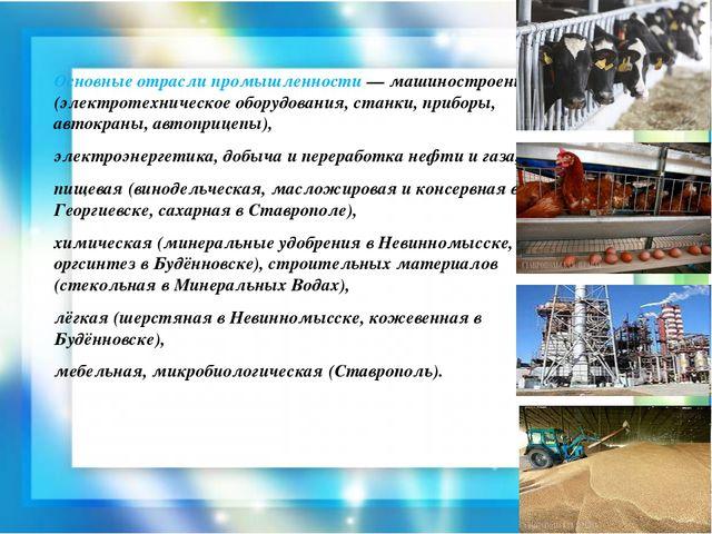Основные отрасли промышленности — машиностроение (электротехническое оборудов...