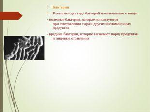 Бактерии Различают два вида бактерий поотношению кпище: - полезные бактерии