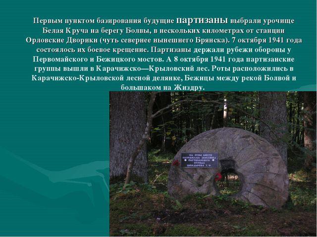 Первым пунктом базирования будущие партизаны выбрали урочище Белая Круча на б...