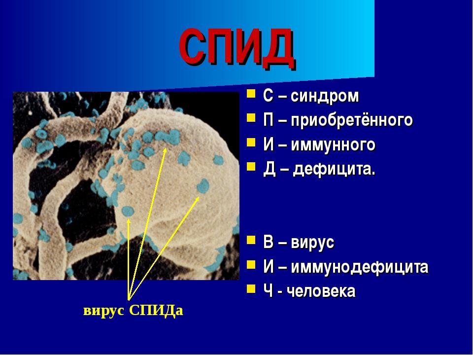 СПИД С – синдром П – приобретённого И – иммунного Д – дефицита. В – вирус И –...