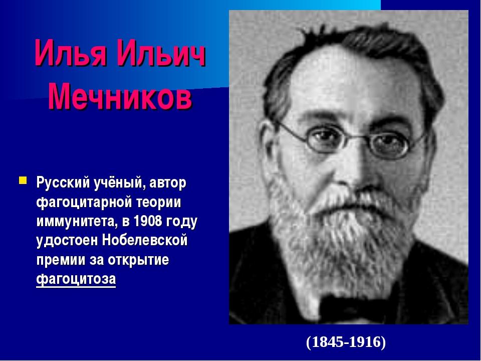 Илья Ильич Мечников Русский учёный, автор фагоцитарной теории иммунитета, в 1...