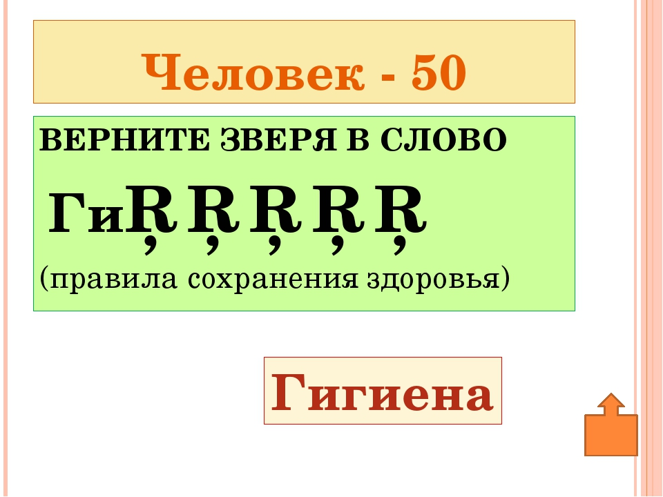 Птицы - 50 Малиновка