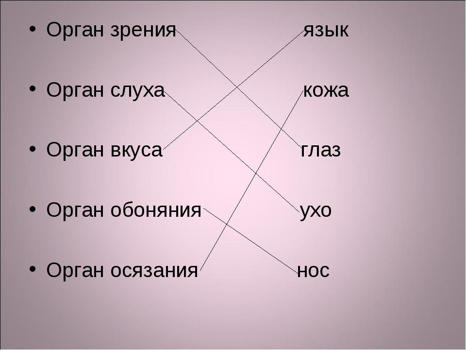 Орган зрения язык Орган слуха кожа Орган вкуса глаз Орган обоняния ухо Орган...