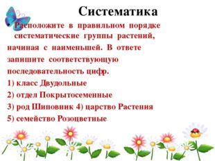 Систематика Расположите в правильном порядке систематические группы растений,