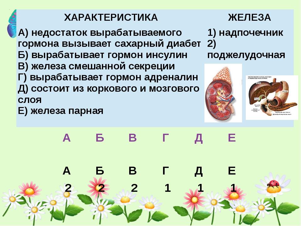 ХАРАКТЕРИСТИКА ЖЕЛЕЗА А) недостаток вырабатываемого гормона вызывает сахарны...