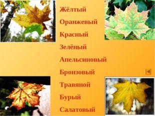Жёлтый Оранжевый Красный Зелёный Апельсиновый Бронзовый Травяной Бурый Салато